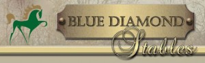 Blue Diamond Stables
